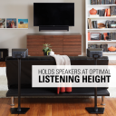 WSS21 Holds speakers at optimal listening height
