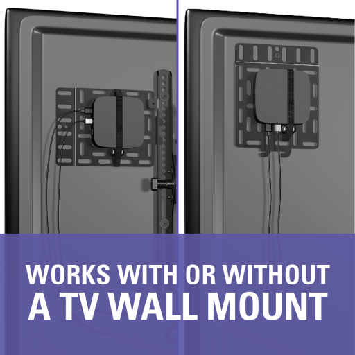 SASP1 Works With and Without a Wall Mount
