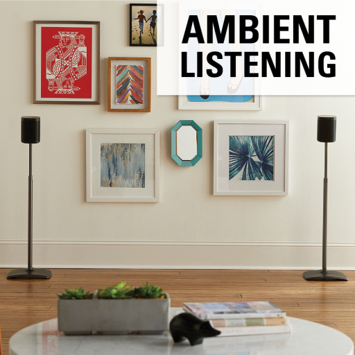 WSSA2-B1 Ambient Listening Two Speakers